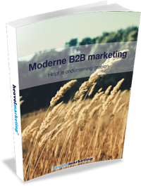 Moderne B2B Marketing-5